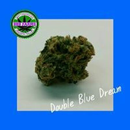 Double Blue Dream Strain